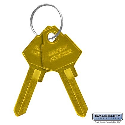 Key Blanks - for Standard Locks of Brass Mailboxes - Box of (50)