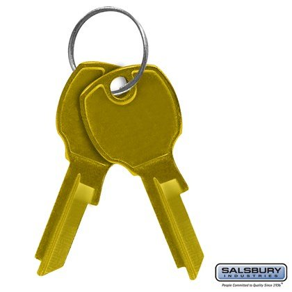 Key Blanks - for Standard Locks of 4C Horizontal Mailboxes - Box of (50)